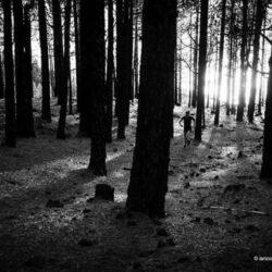 Trail des Petits Castors
